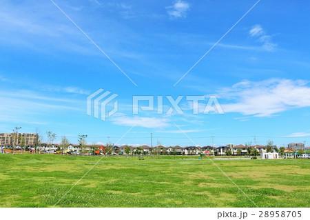 青空の公園広場 28958705