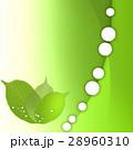 エコ エコロジー 新緑のイラスト 28960310