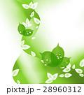 エコ エコロジー 新緑のイラスト 28960312