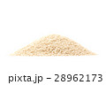 乾燥 種子 白ごまの写真 28962173