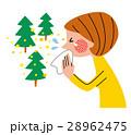 花粉症 スギ花粉 花粉アレルギーのイラスト 28962475