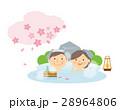 シニア カップル 温泉 桜 イラスト 28964806