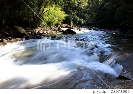 浅い渓流 28973909