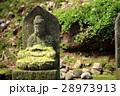 苔むした仏像 28973913