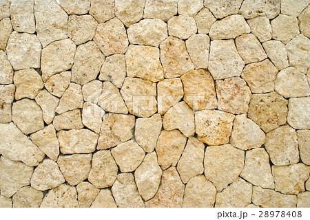 琉球石灰岩の壁 28978408