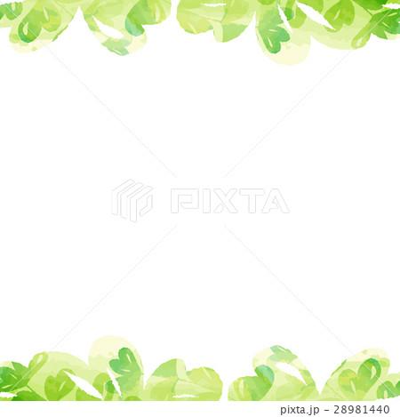 フレーム・植物・水彩 28981440