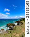 沖縄県 久高島 ロマンスロードからの眺め 28983165