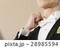 ネクタイ 男性 人物の写真 28985594