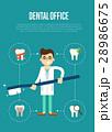デンタル 歯科 歯医者のイラスト 28986675
