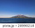 桜島 火山 青空の写真 28990218