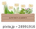 クッキング 料理 調理のイラスト 28991916