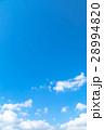 空 青い空 白い雲の写真 28994820