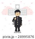 入学式 学生 桜のイラスト 28995876