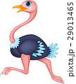 動物 だちょう オストリッチのイラスト 29013465