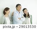 家族 29013530