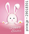 EASTER イースター 復活祭のイラスト 29018301