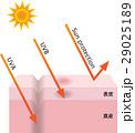 紫外線 UV UVAのイラスト 29025189