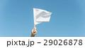 29026878