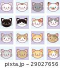 猫 ねこ ネコのイラスト 29027656