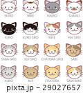 猫 ねこ ネコのイラスト 29027657