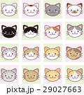 猫 ねこ ネコのイラスト 29027663