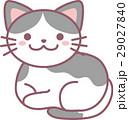 動物 猫 ねこのイラスト 29027840