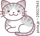 動物 猫 ねこのイラスト 29027843