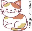 動物 猫 ねこのイラスト 29028624