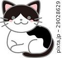 動物 猫 ねこのイラスト 29028629