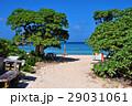 宮古島 新城 海岸の写真 29031061