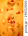 雛のつるし飾り つるし飾り 節句の写真 29032600