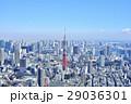 東京 都市風景 東京タワー 29036301