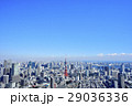 東京 都市風景 東京タワー 29036336
