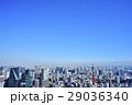 東京 都市風景 東京タワー 29036340