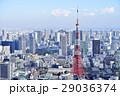 東京 都市風景 東京タワー 29036374