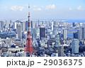 東京タワー 東京 都市風景の写真 29036375