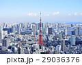 東京タワー 東京 都市風景の写真 29036376