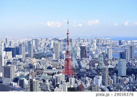 東京 都市風景 東京タワー 29036376