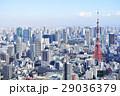 東京タワー 東京 都市風景の写真 29036379