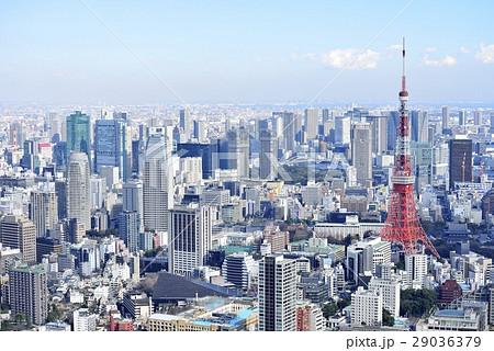 東京 都市風景 東京タワー 29036379