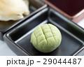 グリーン 緑色 ジャパニーズの写真 29044487