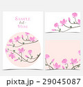 フラワー 花 モクレンのイラスト 29045087
