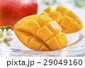 新鮮なマンゴーフルーツ 29049160