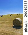 美瑛 牧草ロール 牧草の写真 29049255