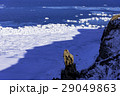 能取岬の冬景色 29049863