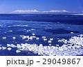 能取岬の流氷と知床連山 29049867
