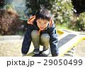 子供 スプリング遊具 男の子の写真 29050499