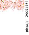 桜 サクラ 水彩のイラスト 29051562