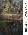 樹木 樹 ツリーの写真 29052087