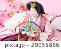 雛祭り 行事 桃の節句の写真 29055866